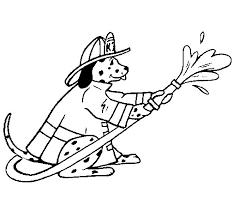 firefighter dalmatian coloring coloringcrew