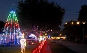 here s where to see lights in ta bay