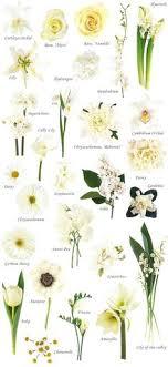 wedding flowers types type of flowers for wedding of white wedding flowers ideas