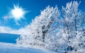 winter snow scenes wallpapers 2560x1440 420 76 kb