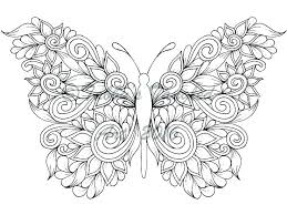 coloring pictures of small butterflies coloring page of a butterfly kartech