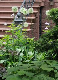 curb appeal 11 front garden ideas to steal from brooklyn