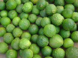 When Does A Lemon Tree Produce Fruit - kaffir lime wikipedia