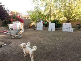 backyard u2013 cindy devin u2013 life in the desert