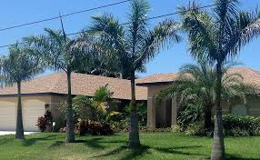 dutch west indies estate tropical exterior miami tropical palms villa luxury villa on canal award winning pool