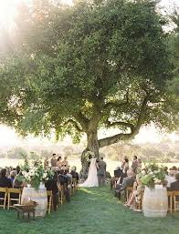 Garden Wedding Ceremony Ideas Big Tree Small Wedding Wedding Stuff Outdoors And Weddings Simple