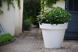vasi in plastica da esterno emejing vasi da terrazzo ideas amazing design ideas 2018
