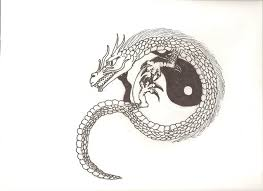 dragon and yin yang by coelophysis83 on deviantart