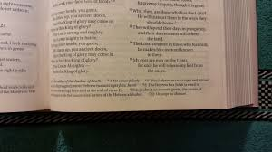 zondervan niv bible for men u2013 devotional bible review u2013 rating
