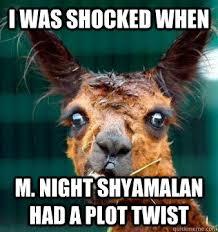 M Night Shyamalan Meme - shocked llama memes quickmeme