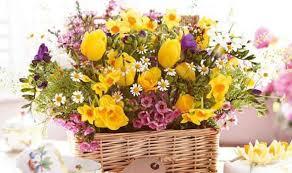 albuquerque florist flowers for albuquerque florist