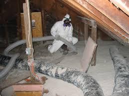 michigan mold remediation michigan mold removal asbestos removal