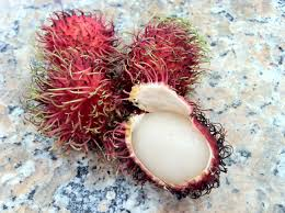 fruit similar to lychee mamon chinos lauren and max like food