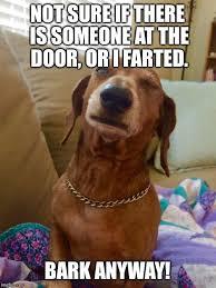 Not Sure If Meme Maker - unsure dog imgflip