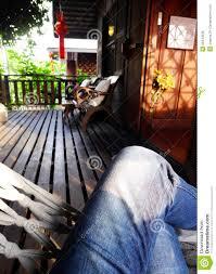 hã ngematte balkon wohnzimmerz balkon hängematte with semptec hã ngematte mit