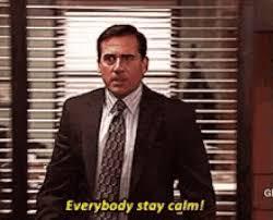 Stay Calm Meme - stay calm the office michael scott animated gif popkey
