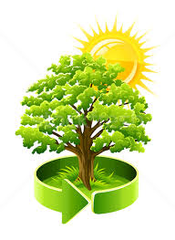 green tree oak as ecology symbol vector illustration loopall