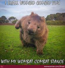 Wombat Memes - mortal wombat by ifreet meme center