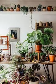 945 best garden and indoor green images on pinterest plants