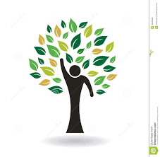 logo tree graphic royalty free stock images image 36465969