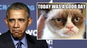 Frown Cat Meme - republicans they re like the grumpy cat meme obama says al