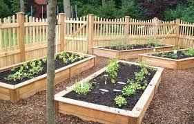 Raised Gardens Ideas Vegetable Garden Ideas Designs Raised Gardens Webzine Co