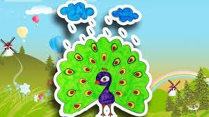 coloring peacock dancing in rain peacock in the rain coloring