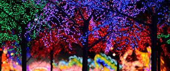 christmas light tour sacramento holiday lights contest
