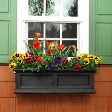 What To Plant In Window Flower Boxes - mayne fairfield 11 in x 36 in plastic window box 5822b the