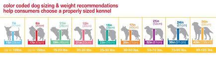 australian shepherd kennel size aspen pet wire home training dog kennel 34