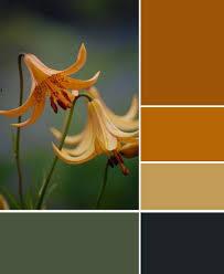 olive black and golds palette palette autumn pinterest