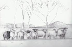 wde 3 3 mi baa it u0027s a sheep sketch wetcanvas