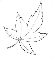 leaf template printable leaf templates free u0026 premium templates