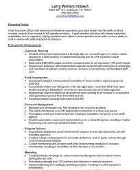 Resume For University Job by Non Profit Executive Free Resume Samples Blue Sky Resumes