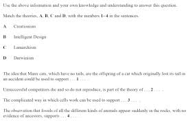 answers for the evolution of mutation test for a gizmo 28 images