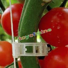 aliexpress com buy 100pcs tomato veggie garden plant support