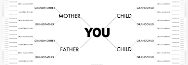 your family tree paley s