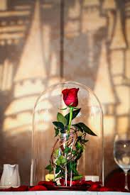 best 25 beauty and beast rose ideas on pinterest disney