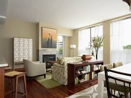 Living Room Ideas For Small Apartment Beautiful Painting Small Apartments Gallery Liltigertoo