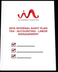 internal audit plan template financial audit schedule template