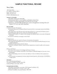 functional resume for students pdf exle resume pdf resume sle