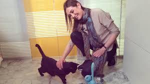 alimentazione casalinga gatto la pappa micio e cucciolo di ecocentrica