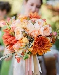 23 orange images beautiful roses bell pepper
