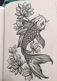 coy fish elaxsir