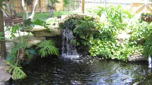pond designs for small gardens home pond ideas edeprem