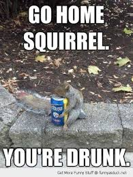 Funny Beer Memes - funny animals and beer memes pics images photos pictures bajiroo
