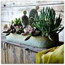309 best outdoors garden images on pinterest gardening garden