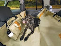 14 best pet travel images on pinterest dog stuff pet travel and