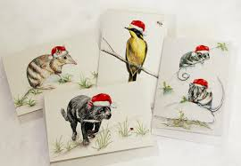 wildlife cards for sale on boxed foxes