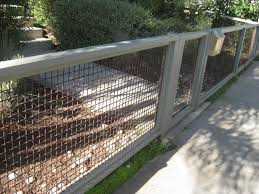 fence modern wire mesh fence conversion my dog things pinterest